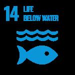 SDG_Icons_Inverted_Transparent_WEB-14
